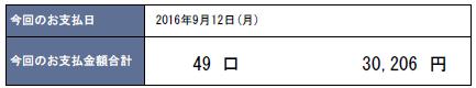 2016年9月支払い:30,206円